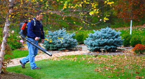 Man trying to clean up the lawn from autumn leaves ** Note: Shallow depth  of field - Spring / Fall Clean-Up Beauty-landscape